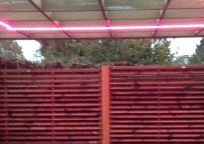 eclairage-led-jardin-creation-angers-b