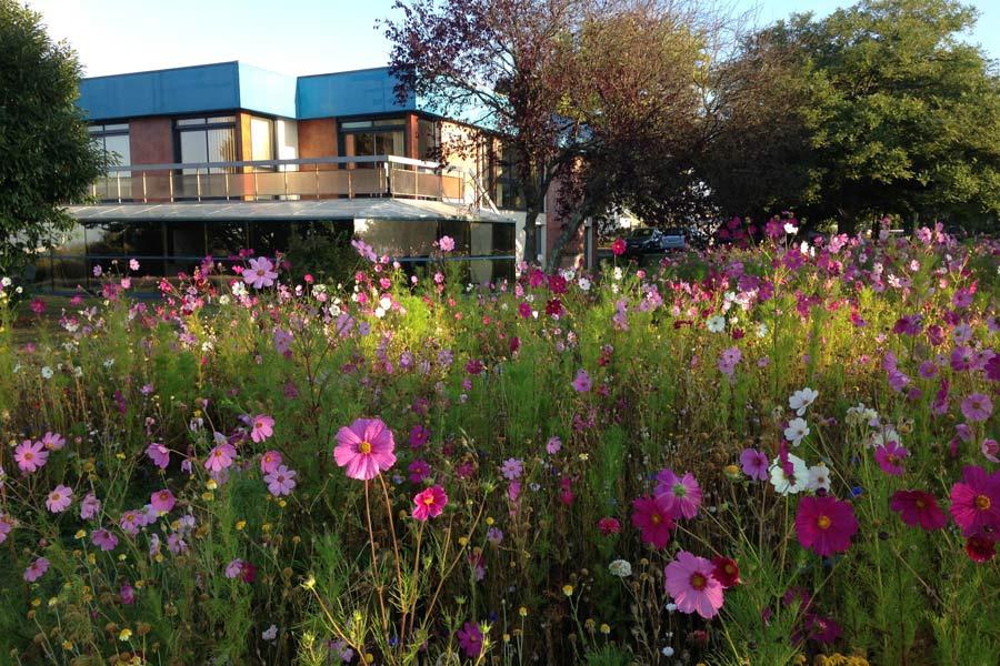 jach res fleuries angers par couleur jardin couleur jardin. Black Bedroom Furniture Sets. Home Design Ideas