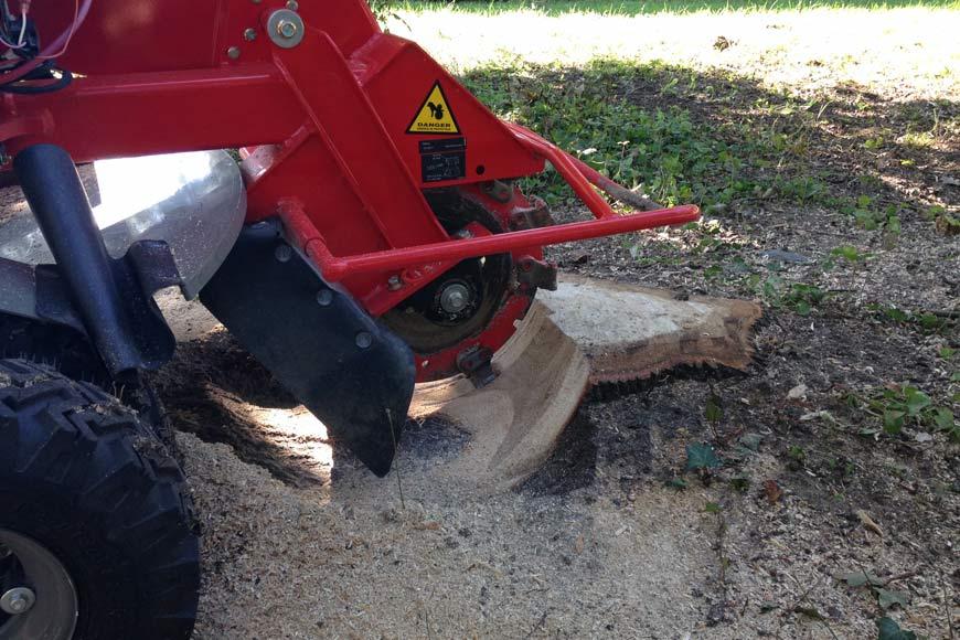 rognage de souche, broyage de souche, abattage d'arbre Saison Services 49