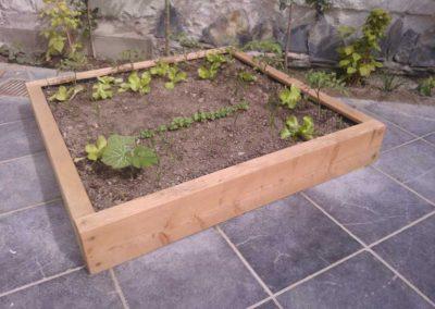 dallage-amenagement-jardin-treillis-2