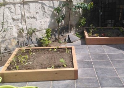dallage-amenagement-jardin-treillis-4
