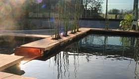 patio-couleur-jardin-portfolio