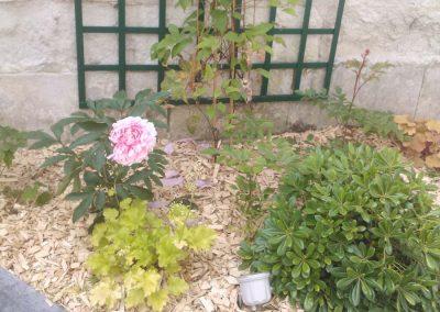dallage-amenagement-jardin-treillis-3
