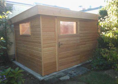 Abri bois toit translucide