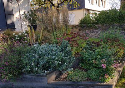 massif-vivaces-automne-bordures-bois-angers-couleur-jardin
